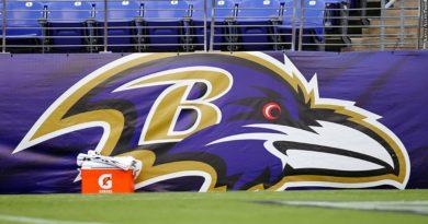Ravens banner